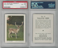 F55 Frostick, Animal Cards, 1933, #18 Fallow Deer, PSA 6 EXMT