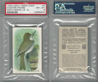J9-5, Church & Dwight, Useful Birds 9th Ser., 1925, #3 Phoebe, PSA 8 NMMT