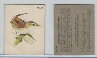 V339-2 Parkhurst, Audubon Society Birds, 1952, #32 Long-Billed Marsh Wren