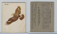 V339-2 Parkhurst, Audubon Society Birds, 1952, #94 Rough-Legged Hawk
