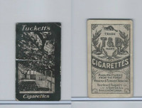 C118 Tuckett Cigarettes, British Views, 1910, Hampton Court, Great Vine