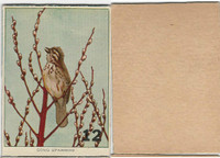 1940's Bird Lotto Game Cards, #12 Song Sparrow