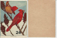 1940's Bird Lotto Game Cards, #24 Cardinal