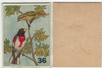 1940's Bird Lotto Game Cards, #36 Rose-Breasted Grosbeak