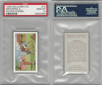 G12-94 Gallaher, Racing Scenes, 1938, #15 Grooming, PSA 10 Gem