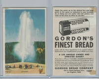 D39-7, Gordon Bread, Natures Splendor, 1940's, Geysers