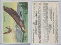 D39-8, Gordon Bread, Speed Pictures, 1941, Bird, Falcon