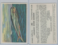 D39-8, Gordon Bread, Speed Pictures, 1941, Fish, Dolphin