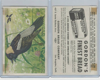 D39-11 Gordon Bread, Bird Pictures, 1950, Bobolink