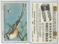 D39-11 Gordon Bread, Bird Pictures, 1950, Scissor Tailed Flycatcher