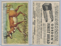 D39-12 Gordons Bread, California Animal, 1940's, Antelope