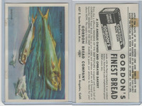 D39-13 Gordons Bread, Denizens Of Deep, 1950's, Dolphin