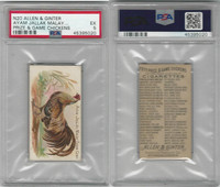 N20 Allen & Ginter, Prize & Game Chickens, 1892, Ayam Jallak Malay, PSA 5 EX