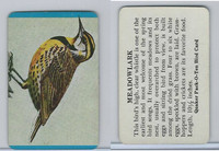 F279-3 Quaker, Pack-O-Ten Bird Cards, 1957, Meadowlark