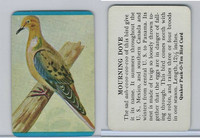 F279-3 Quaker, Pack-O-Ten Bird Cards, 1957, Mourning Dove