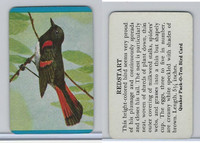 F279-3 Quaker, Pack-O-Ten Bird Cards, 1957, Redstart