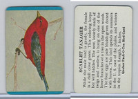 F279-3 Quaker, Pack-O-Ten Bird Cards, 1957, Scarlet Tanager