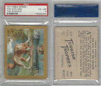 T57 Turkish Trophies, Fable Series, 1910, The Dog & Shadow, PSA 4 VGEX