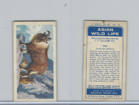 B0-0 Brooke Bond Tea, Asian Wild Life, 1962, #32 Tahr