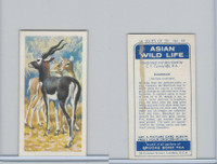 B0-0 Brooke Bond Tea, Asian Wild Life, 1962, #33 Blackbuck