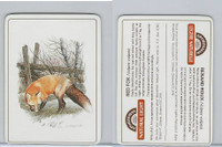 C18-0 Carreras, Wild Animals, 1985, Red Fox