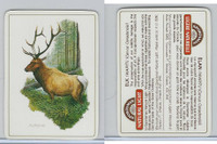 C18-0 Carreras, Wild Animals, 1985, Elk