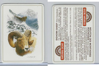 C18-0 Carreras, Wild Animals, 1985, Bighorn Sheep