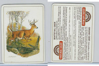 C18-0 Carreras, Wild Animals, 1985, Whitetail Deer