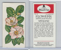 C18-0 Carreras, Flowers All Year Round, 1977, #10 Camellia
