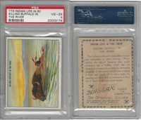 T73 Hassan, Indian Life, 1910, Killing Buffalo in the River, PSA 4 VGEX