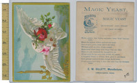 Victorian Card, 1882, Gillett Yeast, Chicago, Dove, Rose, Bird