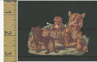 Victorian Diecuts, 1890's, Animals, Tiger & Cubs (23)