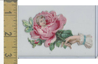 Victorian Diecuts, 1890's, Children, (49) Rose, Head, Hand