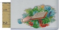 Victorian Diecuts, 1890's, Flowers, (116) Hand, In My Album