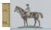 Victorian Diecuts, 1890's, Horses, Race Horse, The Winner (12)