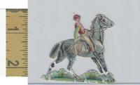 Victorian Diecuts, 1890's, Horses, Race Horse, The Refuse (14)
