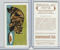 H0-0 Hornimans Tea, Pets, 1960, #4 Tabby Cat