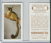 H0-0 Hornimans Tea, Pets, 1960, #15 Bush Baby