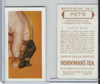 H0-0 Hornimans Tea, Pets, 1960, #17 Fancy Mice