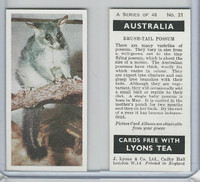L0-0 Lyons Tea, Australia, 1959, #21 Brush-Tail Possum