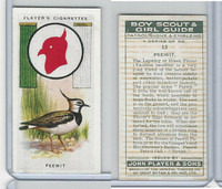 P72-68 Player, Boy Scout & Girl Guide, 1933, #15 Peewit Bird