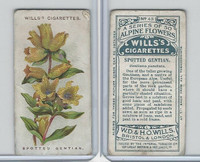 W62-62 Wills, Alpine Flowers, 1913, #43 Spotted Gentian