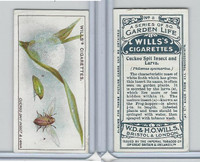 W62-82 Wills, Garden Life, 1914, #8 Cuckoo Spit Insect & Larva