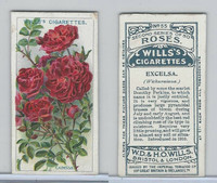 W62-100 Wills, Roses, 1914, #55 Excelsa