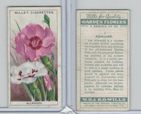W62-139 Wills, Garden Flowers, 1933, #1 Allwoodii