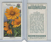 W62-139 Wills, Garden Flowers, 1933, #14 Coreopsis