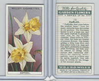 W62-139 Wills, Garden Flowers, 1933, #15 Daffodil