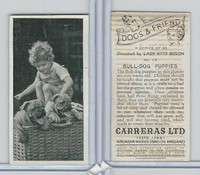 C18-40 Carreras, Dogs & Friend, 1936, #13 Bull Dog Puppies