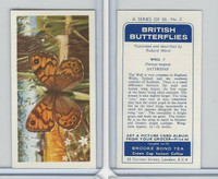B0-0 Brooke Bond, British Butterflies, 1963, #2 Wall