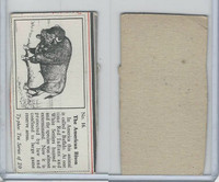 T0-0 Typhoo Tea, Wild Animals, 1955, #16 American Bison